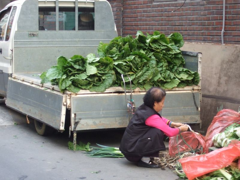 Truck of lettuce